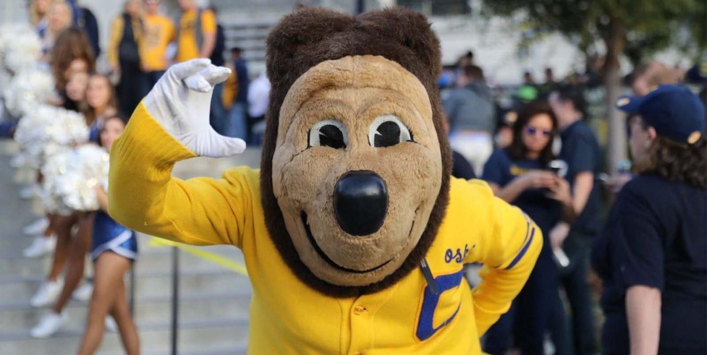 cal berkeley bear mascot