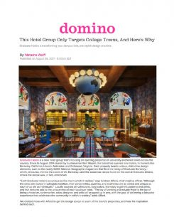 domino magazine article